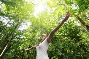 Equilibrio y Naturaleza